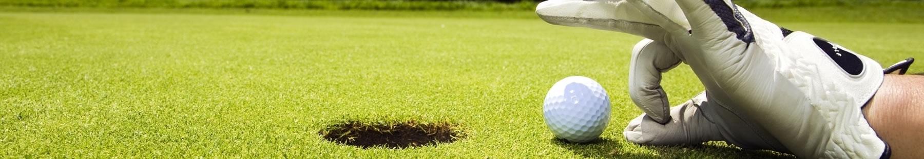 Leden Golfbaan de Vlietlanden